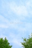 Sky0904002