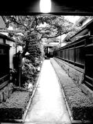 Komachi006_3