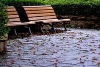 October_rain003