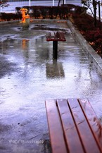Rainday012