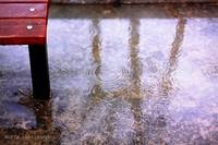 Rainday013