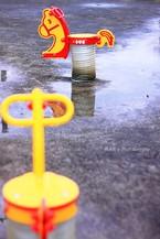 Rainday023