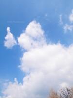 Sky025